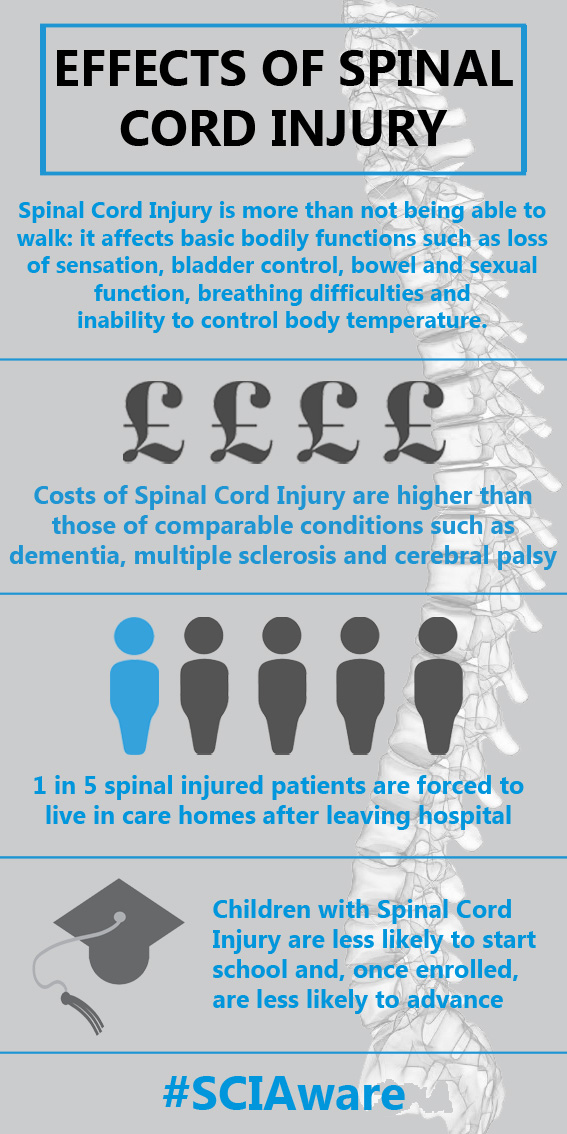 Effects of Spinal Cord Injury infographic