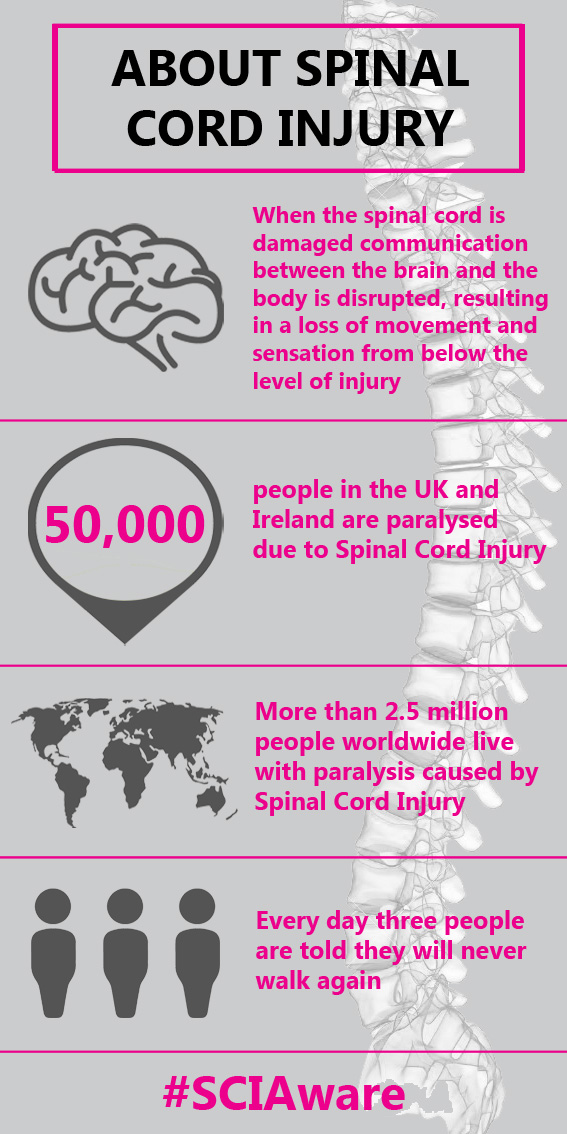 About Spinal Cord Injury infographic