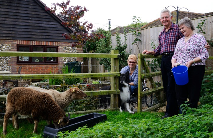 Jackie, Roger, Pam and dog feeding a sheep
