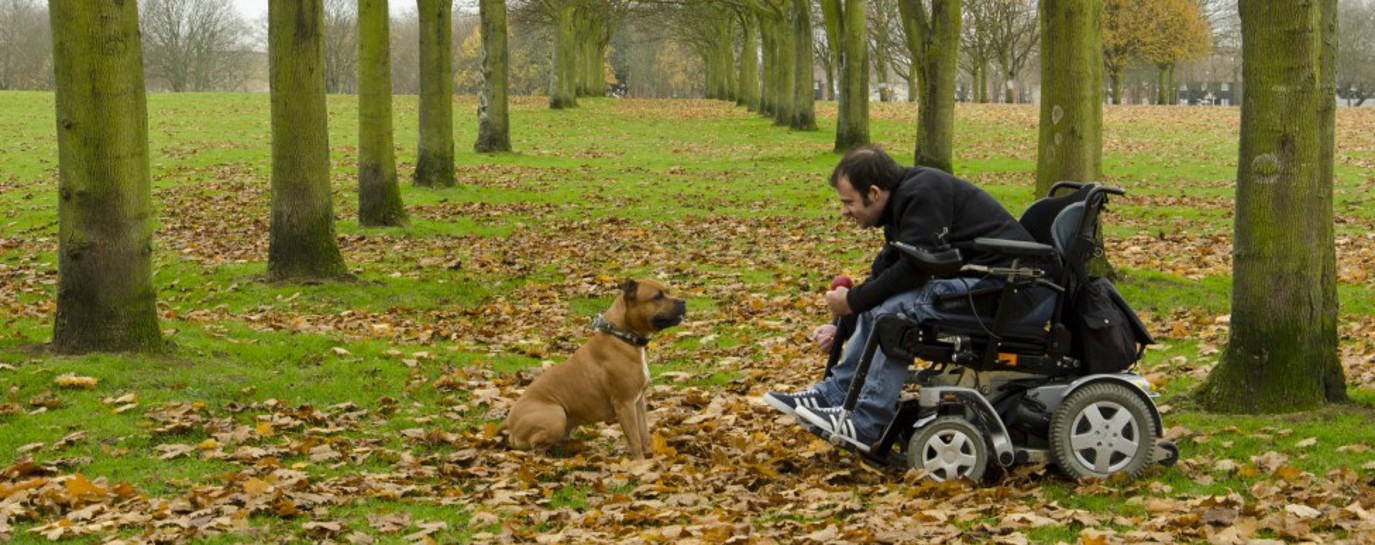 David in his off-road wheelchair in the park with his dog