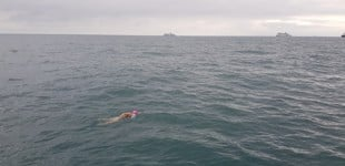 Ruth swimming in the Channel