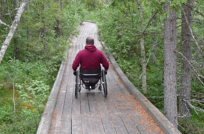 Danny in his wheelchair on a forest boardwalk