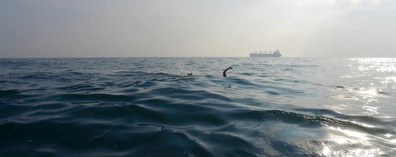 What's to like about open water swimming