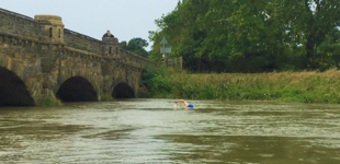 River swimmer nearing a bridge